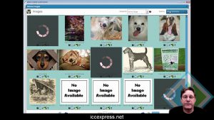 Curation Software On Sale! ICC Express Special 72 hr deal